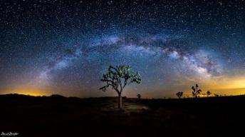 milky-way-galaxy-over-joshua-tree-manish-mamtani