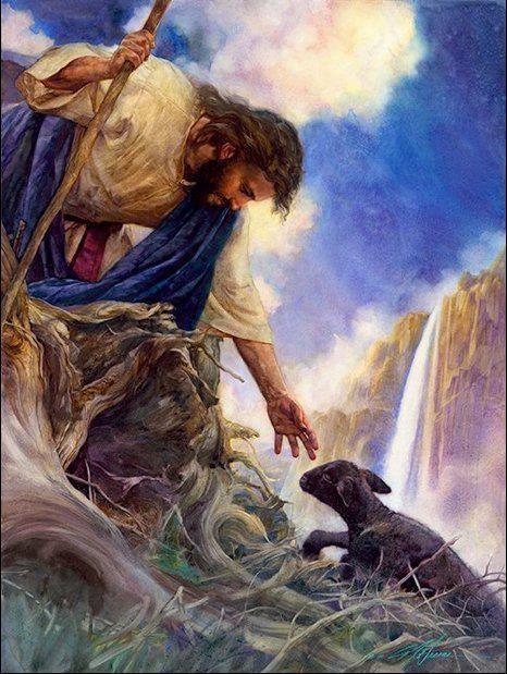 YHshua reaching for a black sheep