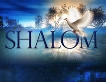 shalom 7