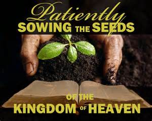 Seeds of Kingdom being sowed patiently