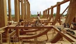 Ark skeleton n Noah