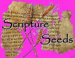 ScriptureSeeds