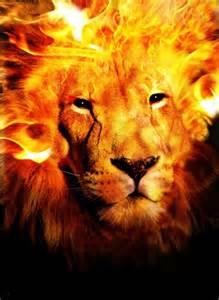Lion portrait on fire