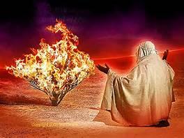 Moshe sitting in front of burning bush