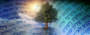 Tree n scripture beautiful