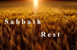 Sabbath Fields