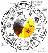 Hebrew Calendar Wheel - Harvests and Reap