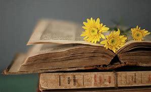 Flowers on open Bible