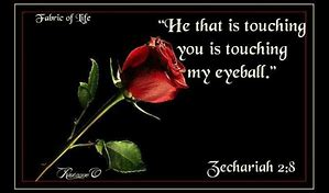 Zech 2v8 touching u touching my eyeball