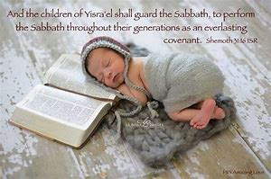 Baby shabbat sleeps on bible