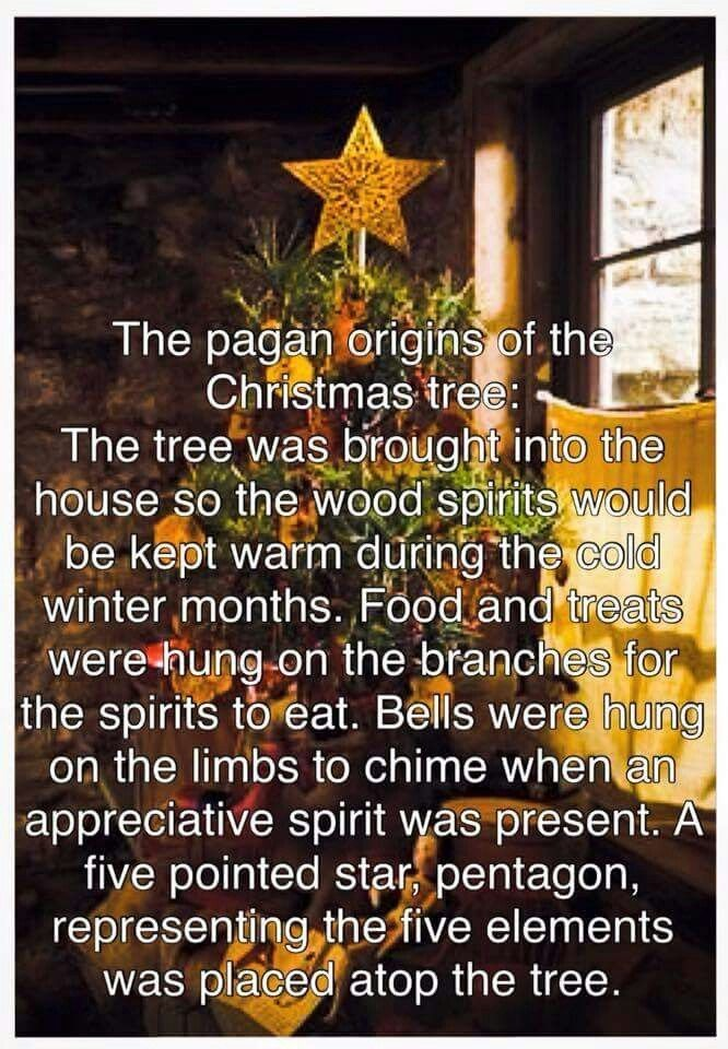 xmas tree pagan origins