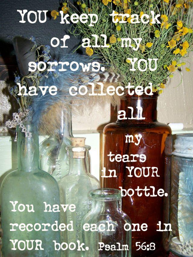 Psalm 56-8